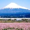 Hình của Phạm Văn Hùng